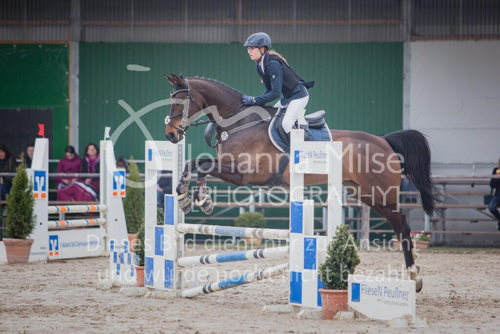 190406_Frühlingsfest_StilE-052 | Frühlingsfest der Pferde 2019, von Lützow Herford, Stil-WB mit erlaubter Zeit