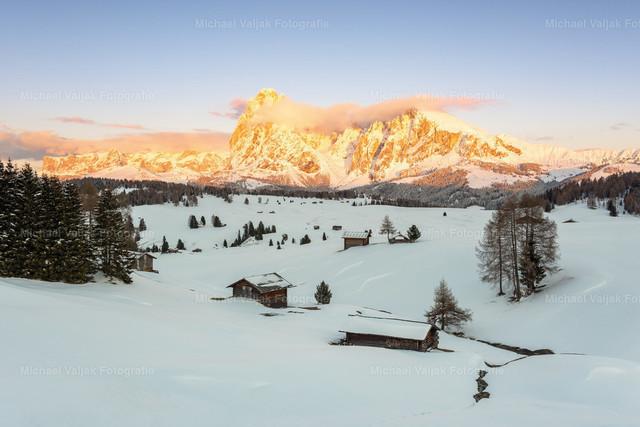 Alpenglühen auf der Seiser Alm  | Blick am Abend zum Langkofel und Plattkofel über die verschneite Seiser Alm.