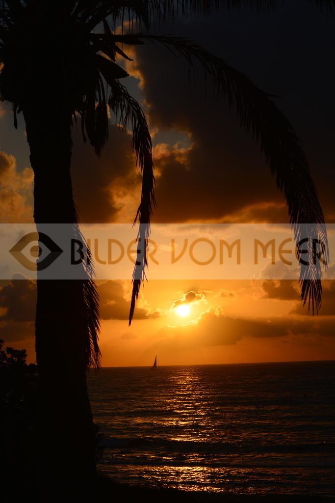 Sonnenaufgang Bilder   Sonnenaufgang am Meer Bilder