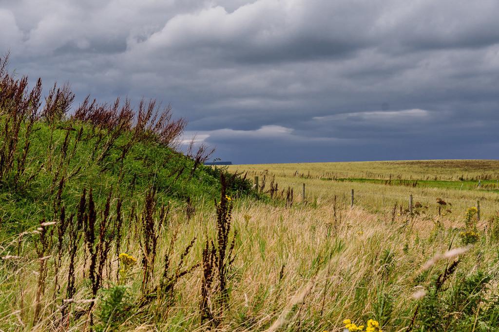 Ireland-Landscape (2)