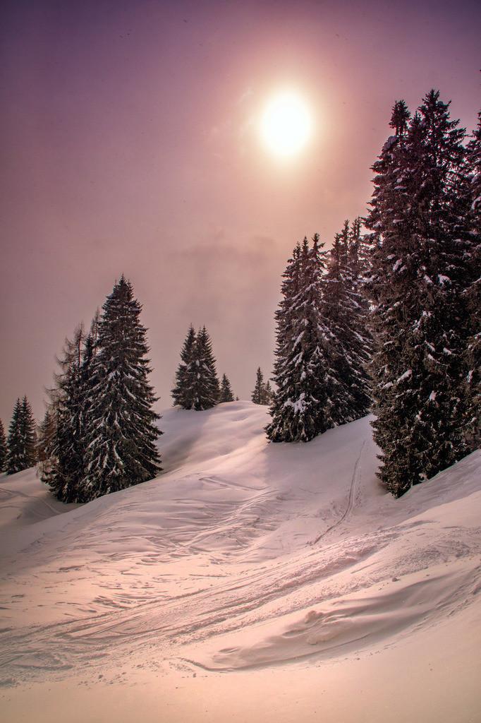 Winterwunderland | Wurzeralm