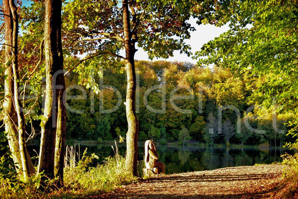 Holzmaar mit Seejungfrau | Das Holzmaar in der Vulkaneifel