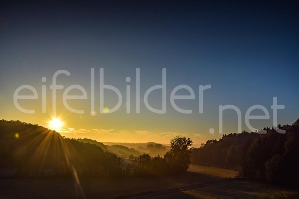 Sonnenaufgang in der Strohner Schweiz   goldener Morgen - fotografiert in der Eifel (Vulkaneifel) bei Strohn
