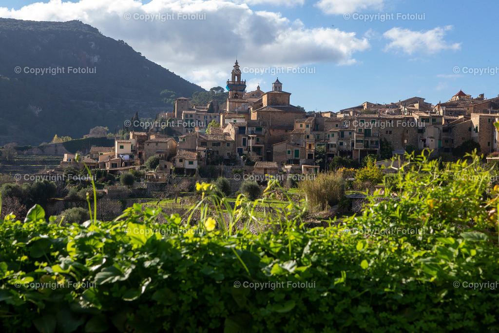 A_LUI_05082021_02   VALLDEMOSSA MALLORCA SPANIEN