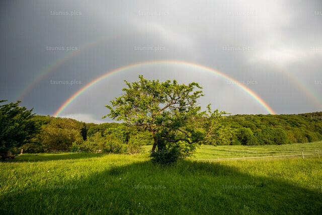 Regenbogen im Taunus   19.05.2019, Kelkheim (Hessen): Ein Regenbogen ist nach einem Gewitterschauer bei Kelkheim-Ruppertshain zu sehen.