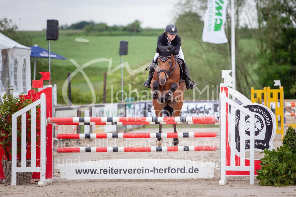 190526_LüPfSpTa_M-2Phasen-733 | Pferdesporttage Herford 2019 Zwei-Phasen-Springprüfung Kl. M*