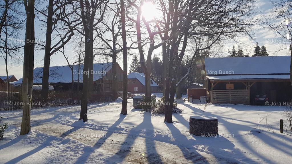 Winter_15