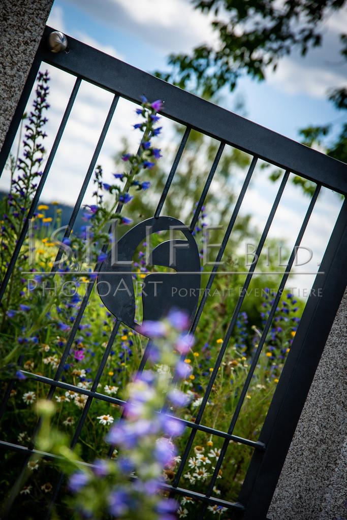 Naturschutzgebiet Doost | Ausblick durch ein Tor in der Natur am Findlingsweg