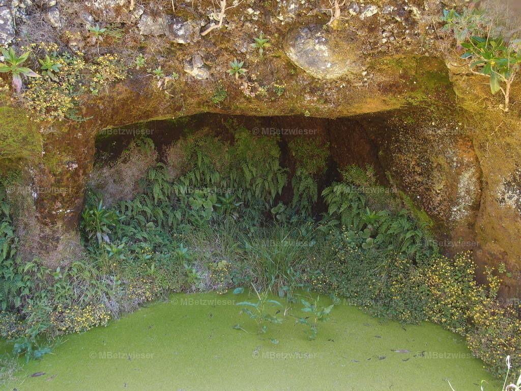 P5075674 | Garoe Wassertümpel