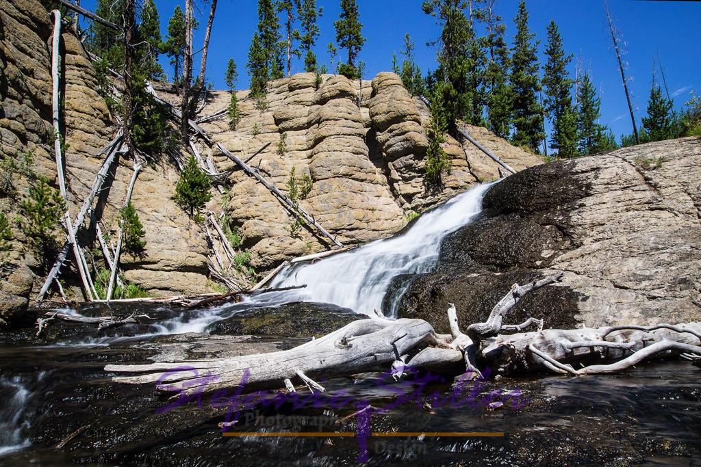 Little Gibbon Falls mit totem Ast | Abseits des Trubels findet man die Little Gibbon Falls