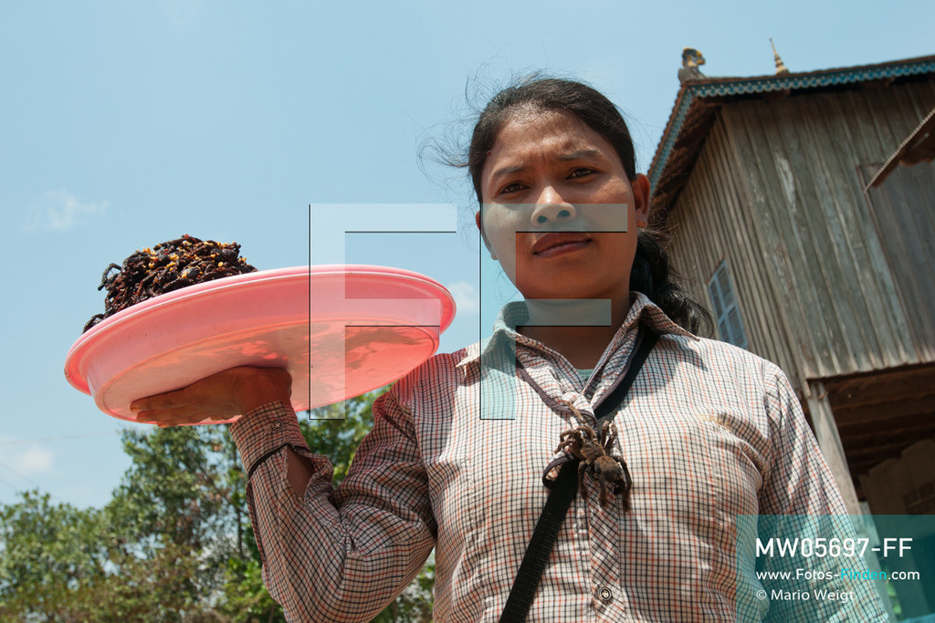 MW05697-FF | Kambodscha | Provinz Kampong Cham | Skoun | Reportage: Kambodschas achtbeiniger Snack | Straßenverkäufer Shin ist fertig für den Verkauf der zubereiteten Vogelspinnen. Ein lebendes Exemplar an ihrer Bluse soll die Kunden anlocken. In heißem Öl knusprig gebraten, mit Glutamat, Salz und Zucker vermischt und obendrein mit hauchdünnen Knoblauchscheiben verfeinert - so mögen die Kambodschaner ihre schwarzen Vogelspinnen.  ** Feindaten bitte anfragen bei Mario Weigt Photography, info@asia-stories.com **