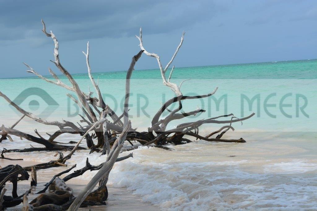 Bilder vom Meer Karibik | Unbekannte und unberührte Strände in Kuba