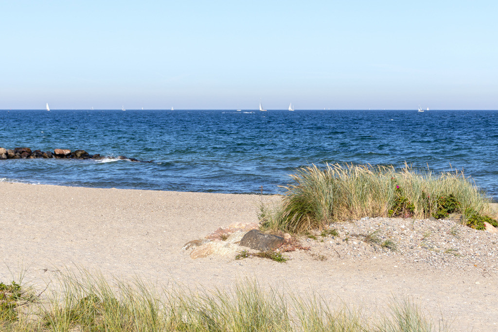 Strand in Schönhagen | Strand in Schönhagen im Sommer