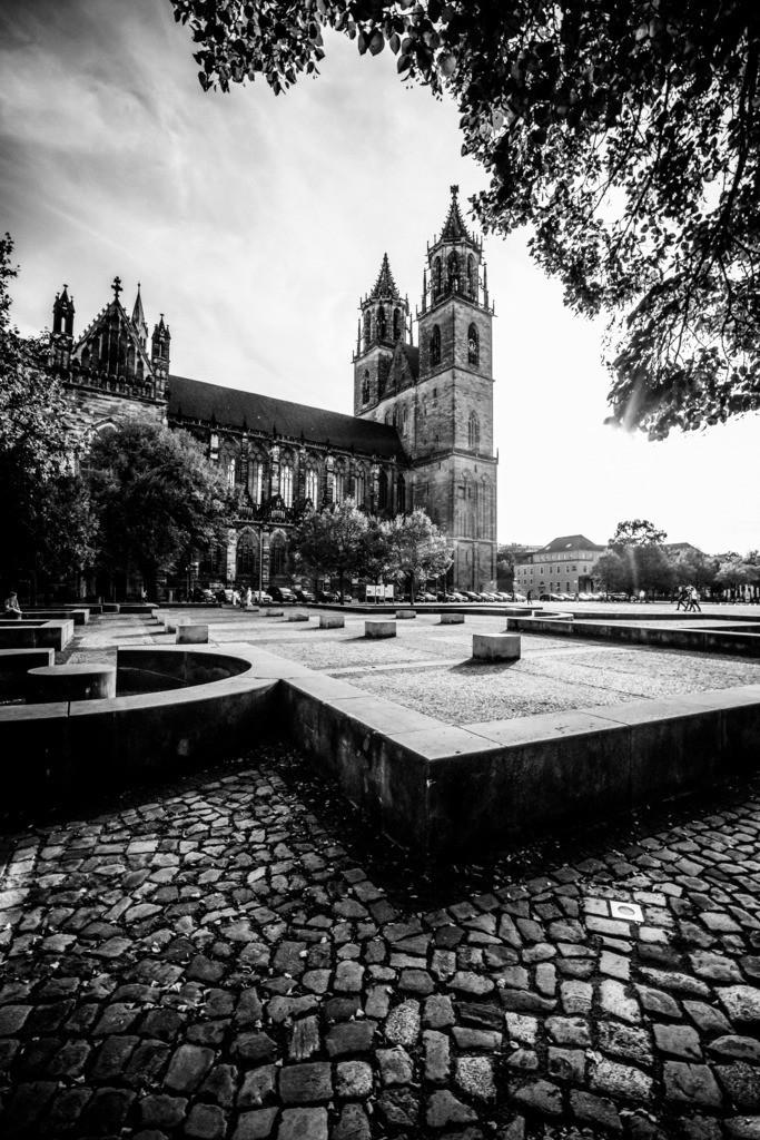 Magdeburger Dom schwarz/weiß