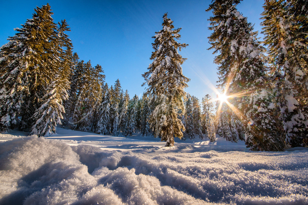 Seefeld | Winter in Wildmoos