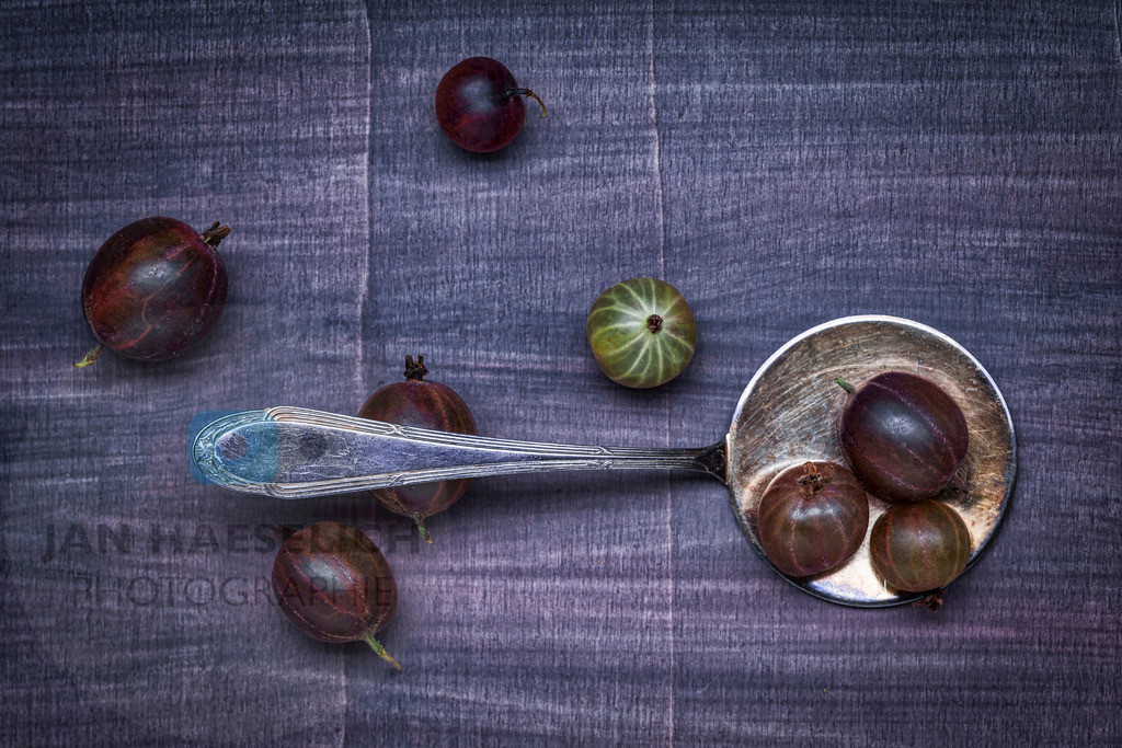 Familiensilber - Tortenheber | Tortenheber mit Stachelbeeren