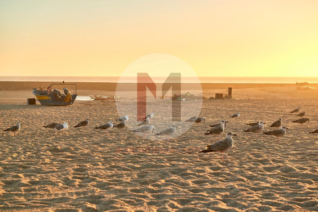 Sonnenuntergang am Strand in Aguda in der Nähe von Porto in Portugal