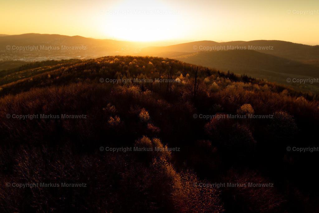 Print_Sunset-4