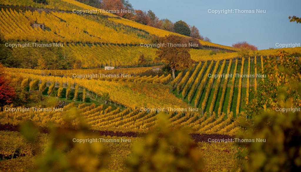 Herbst_Bergstrasse | Herbst, Hessiche Bergstrasse, Bensheim, ,, Bild: Thomas Neu