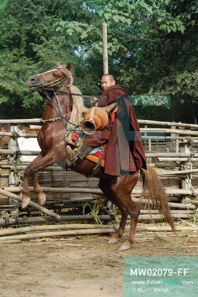 MW02079-FF | Thailand | Goldenes Dreieck | Reportage: Buddhas Ranch im Dschungel | Abt Phra Khru Bah Nuachai Kosito auf seinem Pferd  ** Feindaten bitte anfragen bei Mario Weigt Photography, info@asia-stories.com **