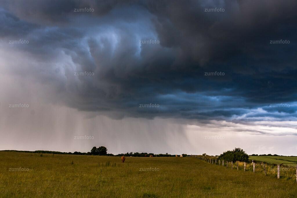 0-090620_191816-9042 | --Dateigröße 3888 x 2592 Pixel-- Regenschleier über Koppel