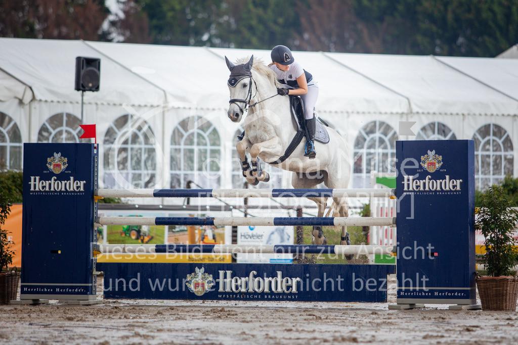 190524_LüPfSpTa_M-Spr-619 | Pferdesporttage Herford 2019 Springprüfung Kl. M*, regional