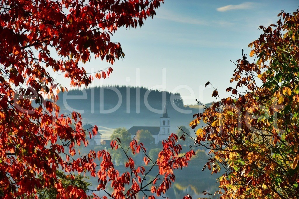 Herbstleuchten in Schalkenmehren | Daun Schalkenmehren in der Eifel (Vulkaneifel) - leuchtend buntes Herbstlaub und ein Hauch von Morgennebel, der die Kirche von Schalkenmehren in ein geheimnisvolles Licht hüllt