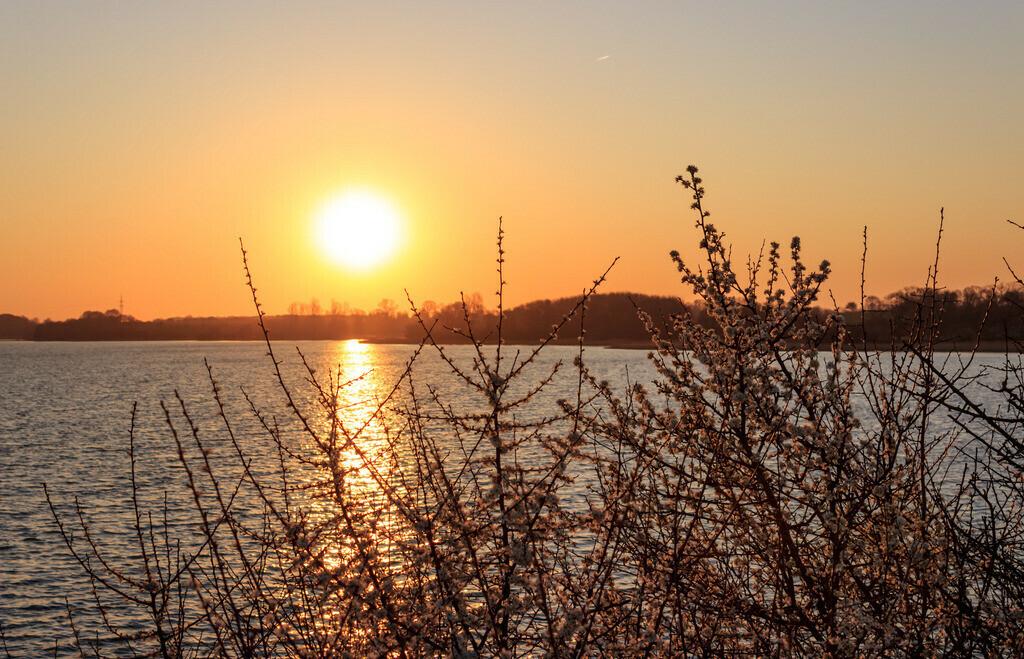 Stubbe an der Schlei | Sonnenaufgang in Stubbe