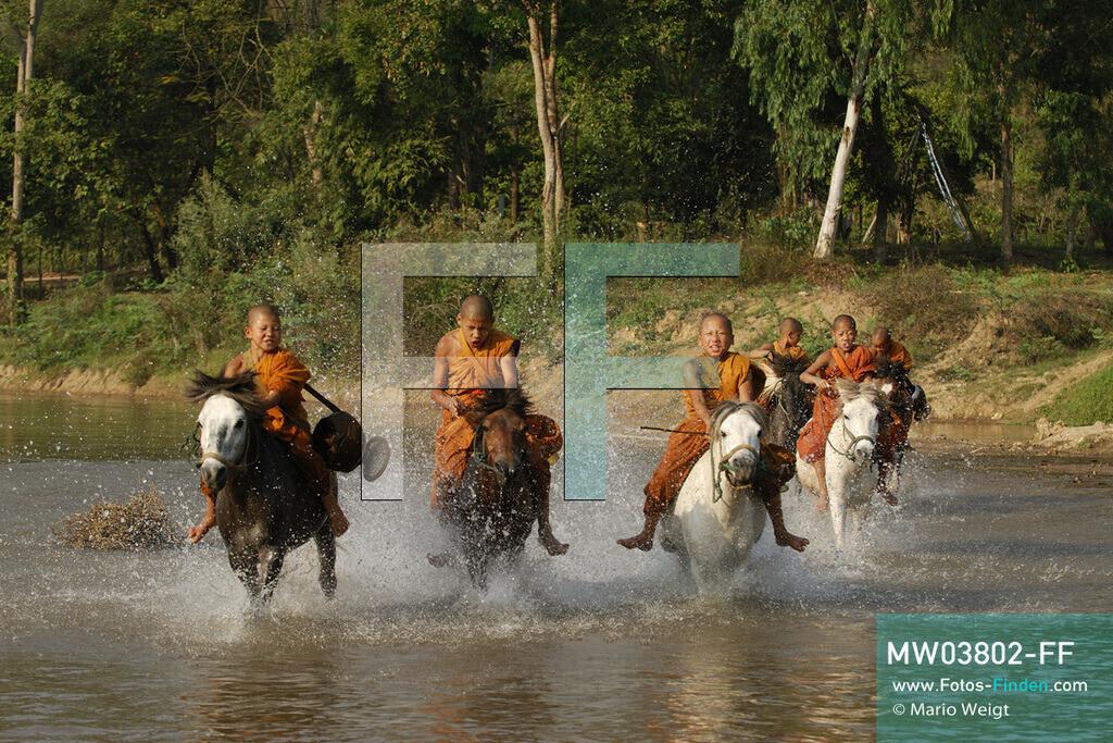 MW03802-FF | Thailand | Goldenes Dreieck | Reportage: Buddhas Ranch im Dschungel | Die jungen Mönche reiten auf ihren Pferden durch den Fluss.  ** Feindaten bitte anfragen bei Mario Weigt Photography, info@asia-stories.com **