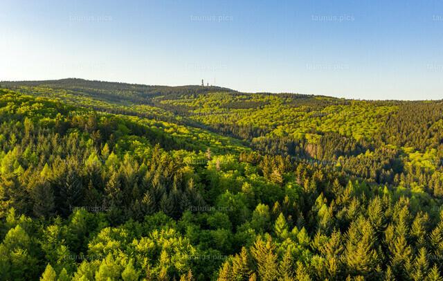 Frühling im Taunus | 26.04.2020, Königstein (Hessen): Blick über den grünen Wald auf den Großen Feldberg (hinten). (Luftaufnahme mit einer Drohne)