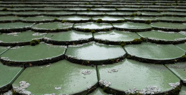 Grüne Dachschindeln | Reihenförmig gelegte grüne Dachschindeln.