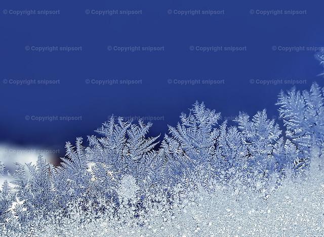 Eisblumen | Eisblumen an einer Fensterscheibe