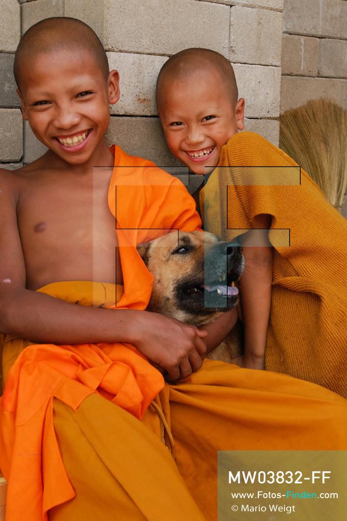 MW03832-FF   Thailand   Goldenes Dreieck   Reportage: Buddhas Ranch im Dschungel   Junge Mönche spielen mit einem Hund in ihrer Freizeit.  ** Feindaten bitte anfragen bei Mario Weigt Photography, info@asia-stories.com **