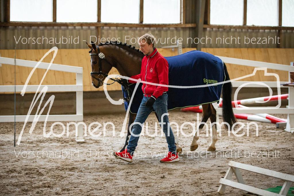 Freispringen-Pony-3j-43