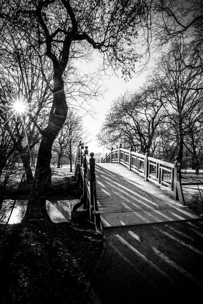 Leipzig Clara Zetkin Park    Und in der Stille ging ich über die Brücke und sah dich du ewig schöne Sonne.