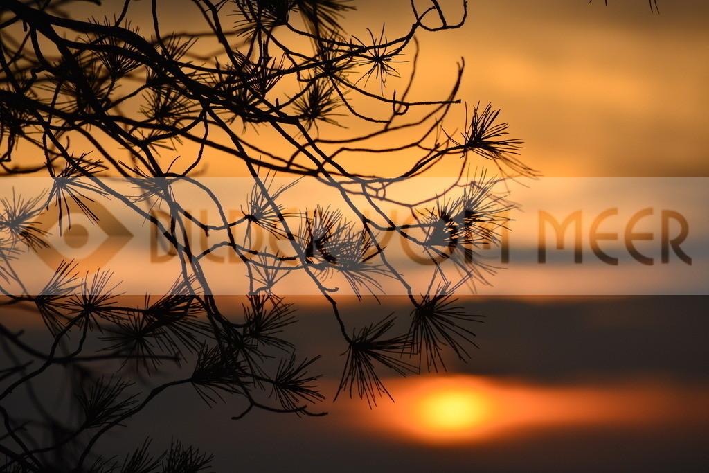 Bilder Sonnenuntergang  | Sonnenuntergang Bilder im Herbst
