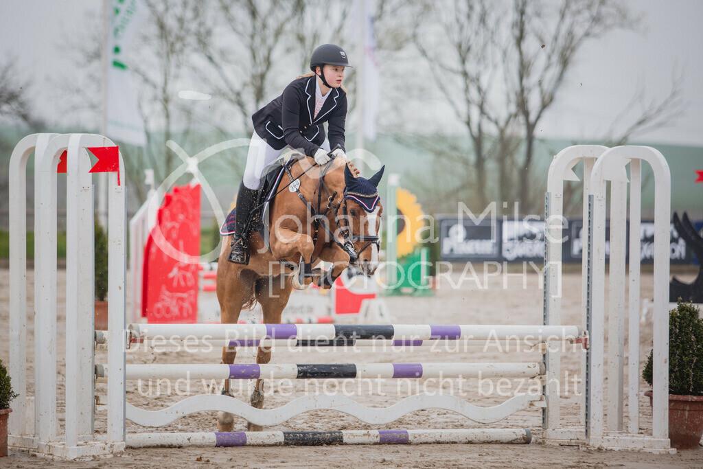 190406_Frühlingsfest_StilE-031 | Frühlingsfest der Pferde 2019, von Lützow Herford, Stil-WB mit erlaubter Zeit
