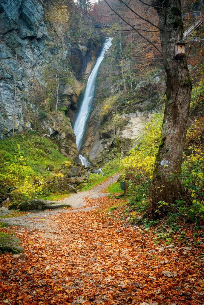 Gainfeld waterfall in Bischofshofen in autumn | Gainfeld waterfall in Bischofshofen in autumn Salzburger Land