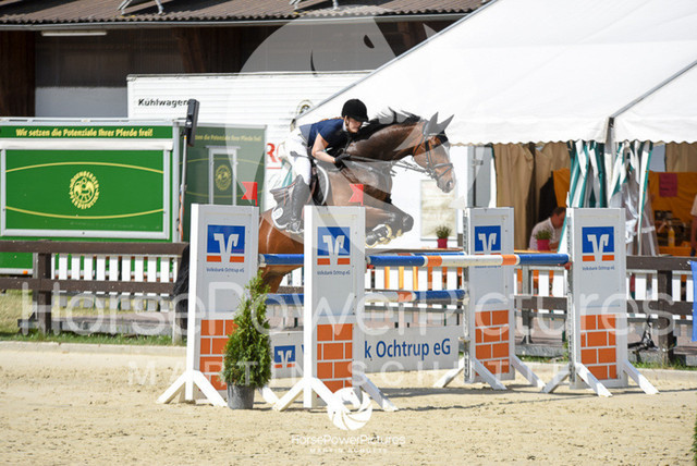 RFV Ochtrup - Prüfung 16.1-9946