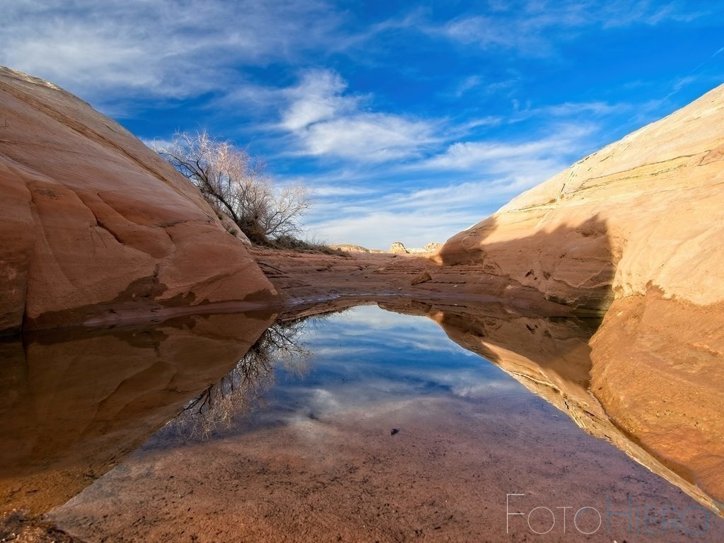 Valley of Fire | kleine Wasserstelle im Valley of Fire State Park, Nevada, USA