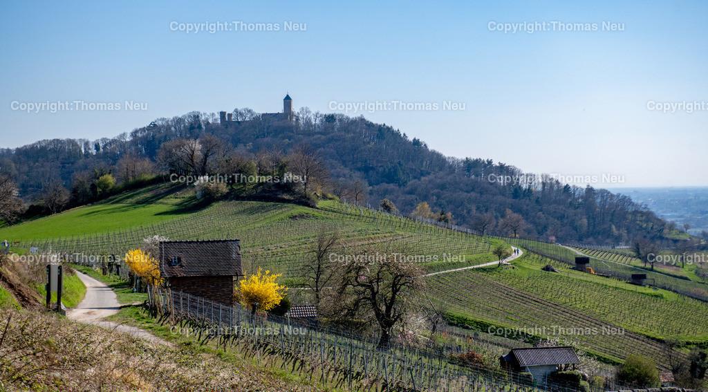 DSC_5962 | Bensheim, Heppenheim, die Bergstrasse zwischen Bensheim und Heppenheim, mit Blick auf die Starkenburg, ,, Bild: Thomas Neu