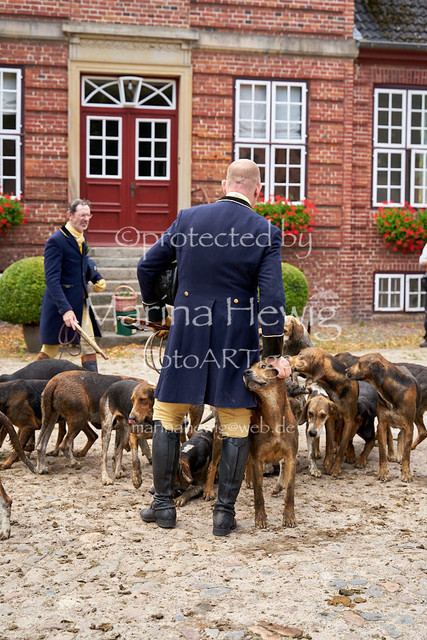 Jagd Knoop 216942_Marina Hewig