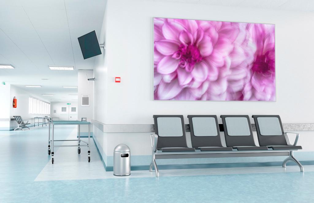 Blumenbild für den Wartebereich einer Klinik | Anwendungsbeispiel für den Wartebereich eines Krankenhauses. Sie finden dieses Motiv in der Galerie Farben und Formen - Pflanzen abstrakt