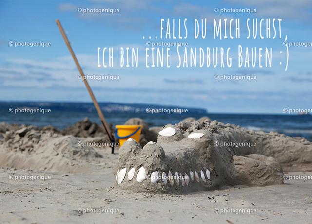 Krokodil-am-Strand-web