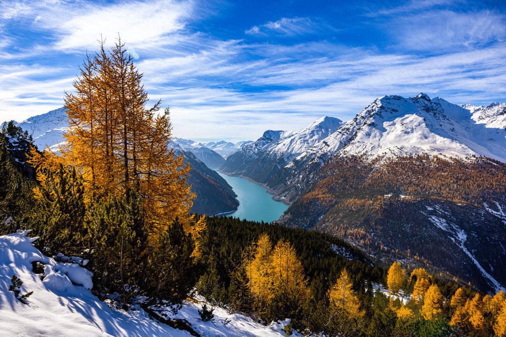 Larches party   Autumn is larch season in the Engadin, in this case with a stunning view to the Lago di Livigno.