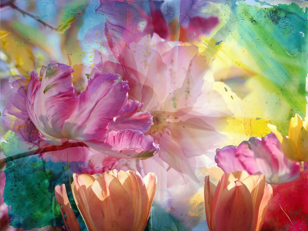 Blumen Traum | Meine Fotografien der Frühlingsblumen wollte ich mit meinen Gemälden verbinden, mich einfach zu der ganz großen Kunst gesellen, wenigstens ein Bisschen dabei sein und den Meister ehren