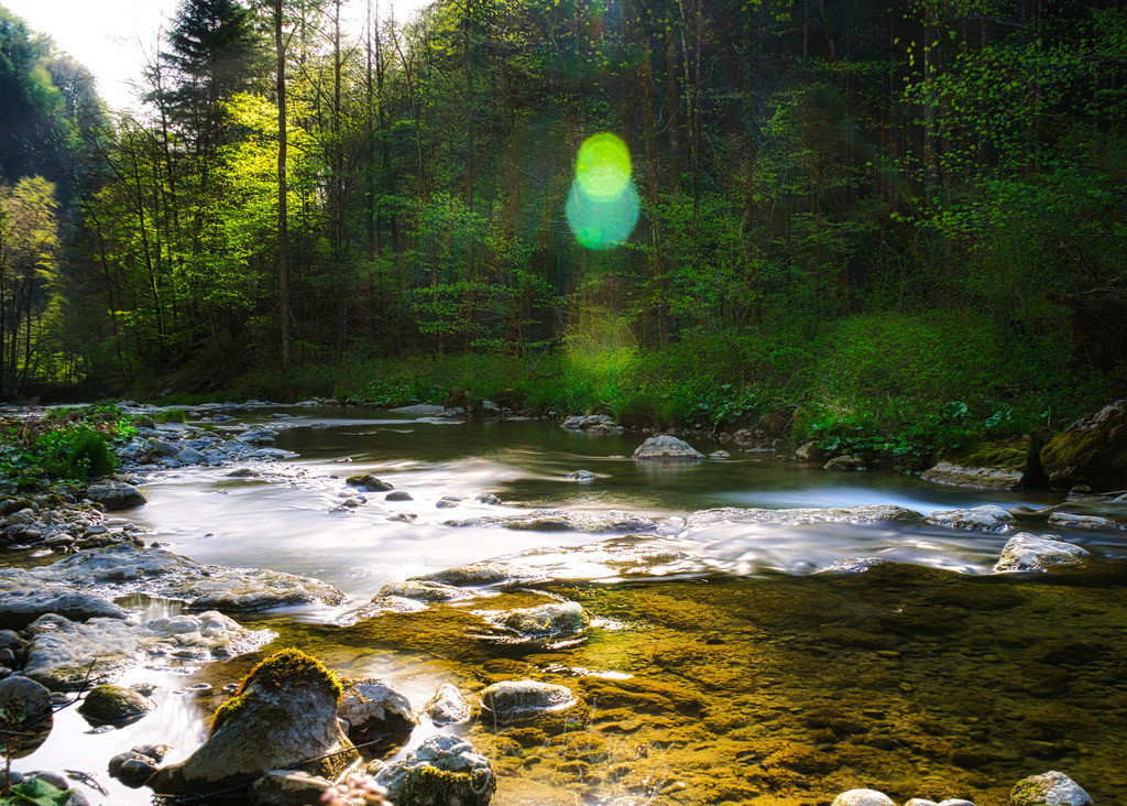 Bach im Frühling   Frühlingslicht am Steinbach
