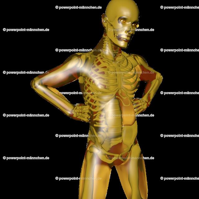 a golden man with transparent skeleton | Quelle: https://3dman.eu   Jetzt 250 Bilder kostenlos sichern