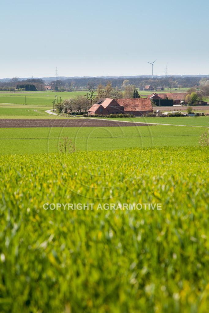 20100417-IMG_5644 | Frühlingslandschaft - AGRARFOTO Bildagentur