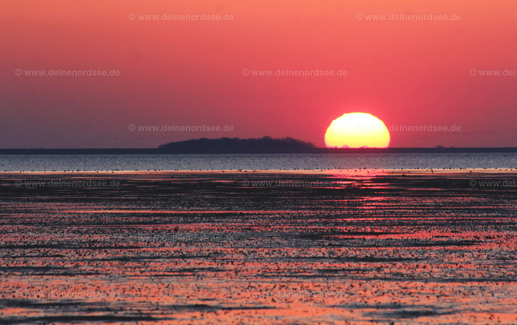 Sonnenuntergang bei Föhr